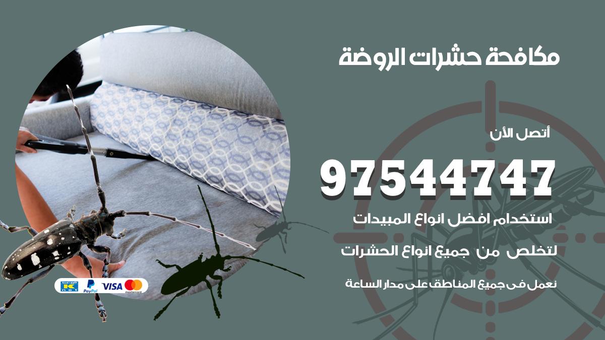 مكافحة الحشرات الروضة