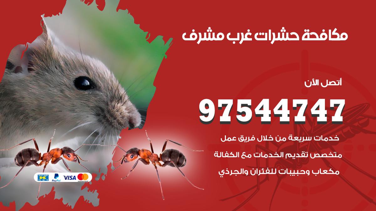 مكافحة الحشرات غرب مشرف